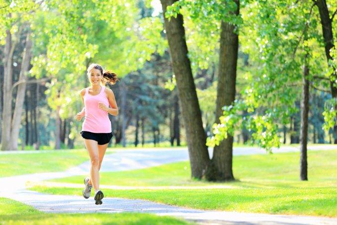 carnitina metabolismo grassi